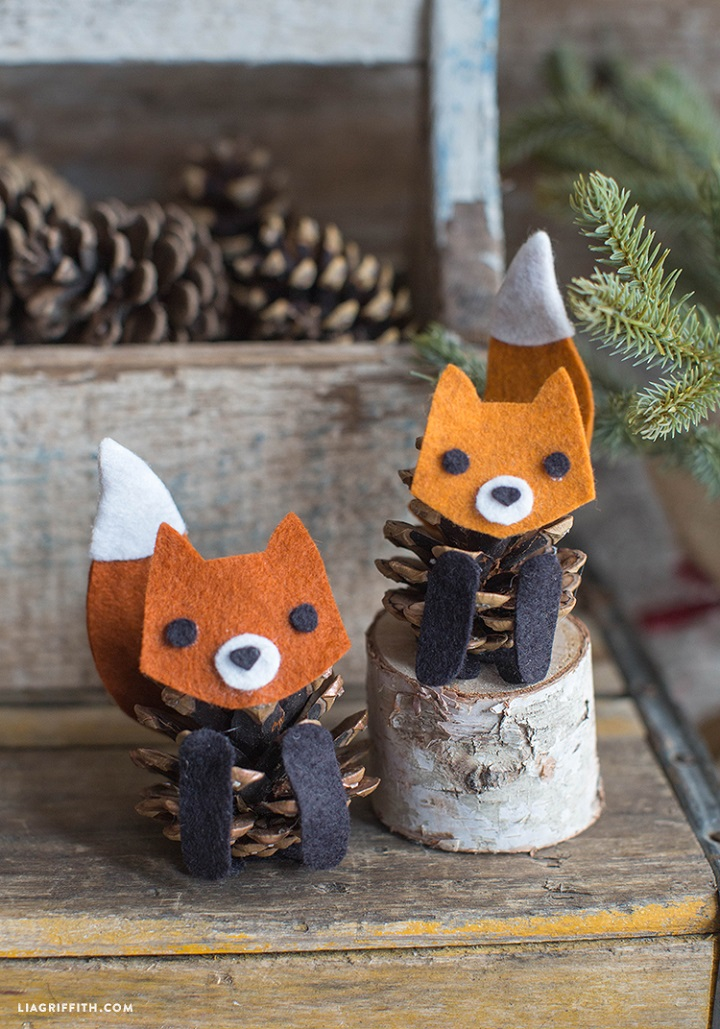 Pinecone Fox01
