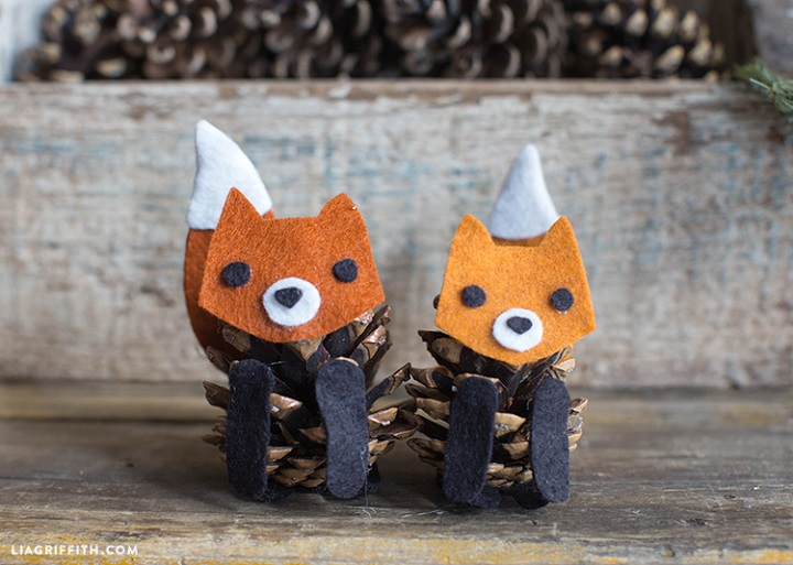 Pinecone Fox02
