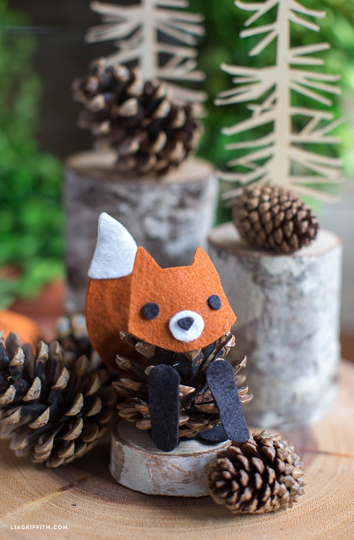 Pinecone Fox03